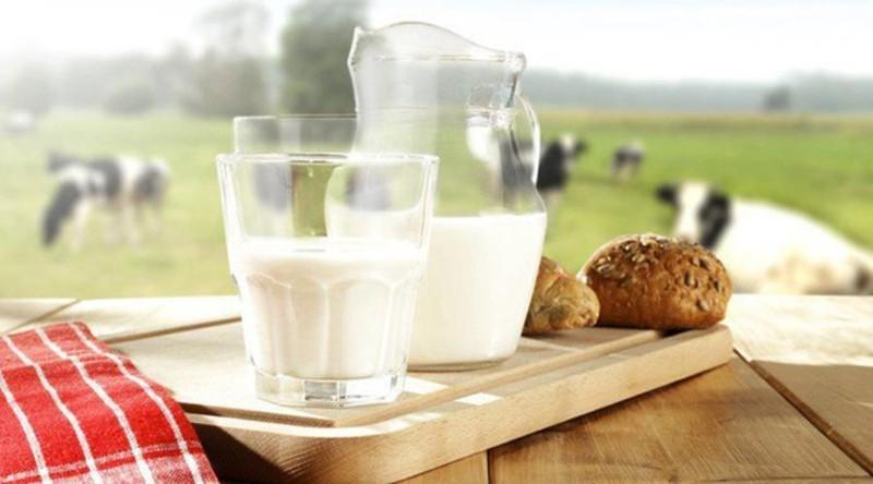 Vì sao một số trường hợp trẻ nhỏ uống sữa bò lại bị đau bụng? - ảnh 1