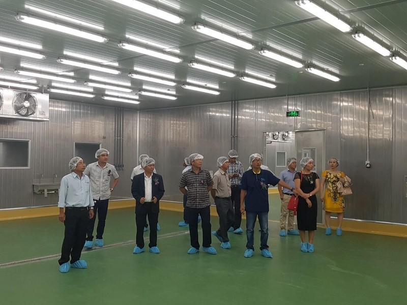 Nhật Bản khánh thành nhà máy hải sản tại Phan Thiết - ảnh 1