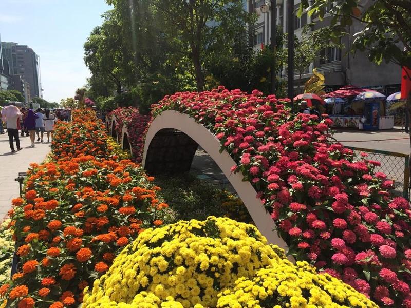 Ngắm đường hoa Nguyễn Huệ khoe sắc sáng 30 tết - ảnh 5