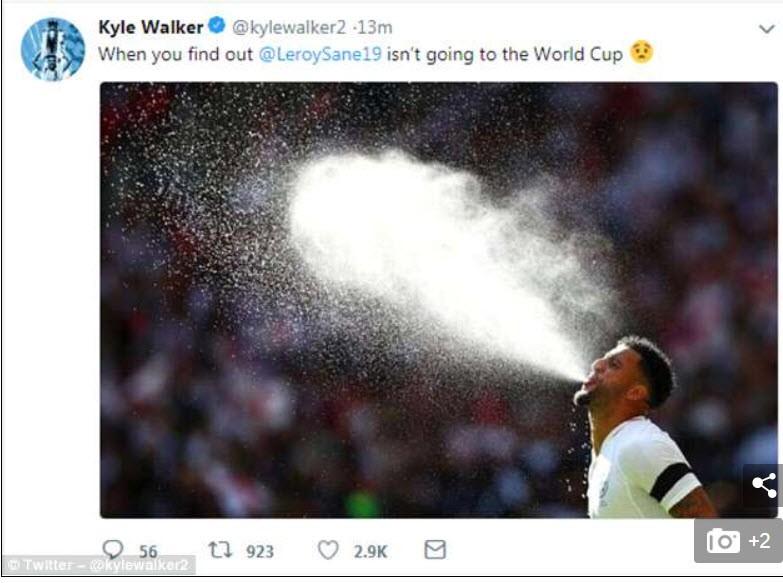 Thế giới giận dữ, than khóc vì Sane bị Đức loại khỏi World Cup - ảnh 4