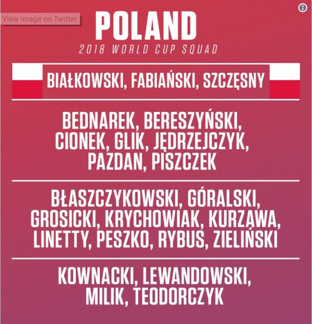 Danh sách chính thức 32 đội tuyển dự World Cup 2018 - ảnh 14