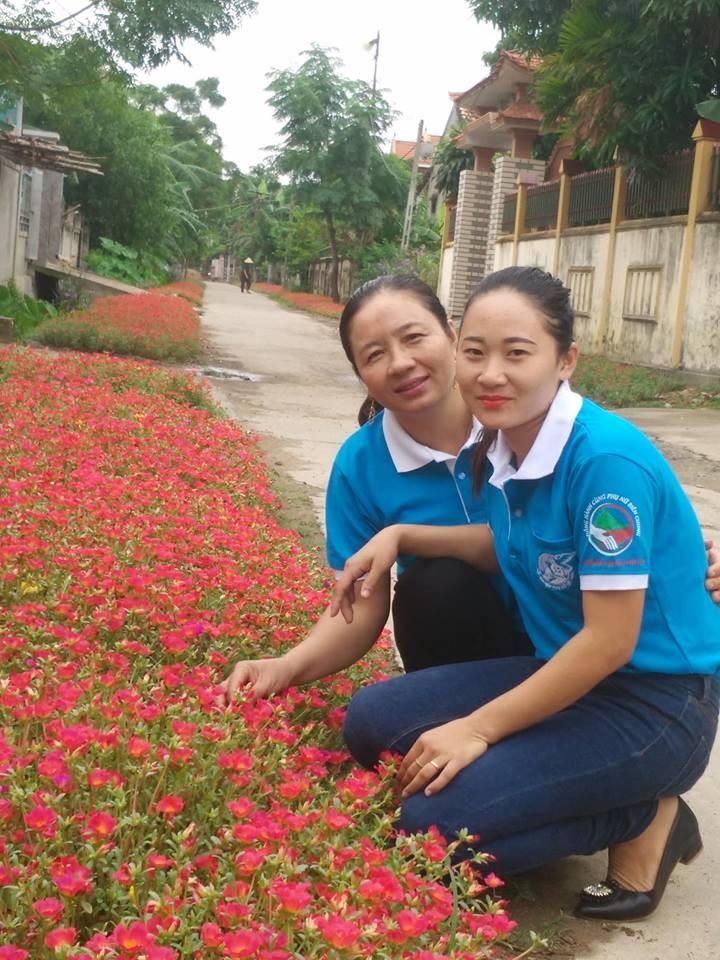 Làng hoa mười giờ đẹp bình dị bên dòng Nhật Lệ - ảnh 7