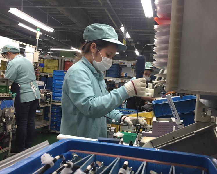 Hàng ngàn người Việt trước cơ hội làm việc lâu dài ở Nhật - ảnh 1