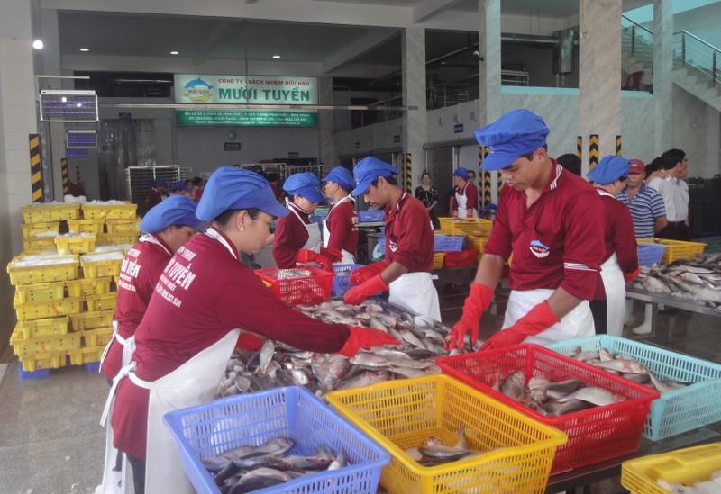 TP.HCM bắt tay Bình Thuận làm sản phẩm sạch - ảnh 1