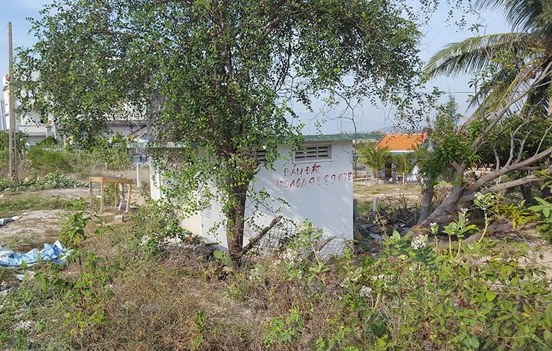 Khánh Hòa: Đề nghị cho chuyển nhượng lại đất ở Bắc Vân Phong - ảnh 1