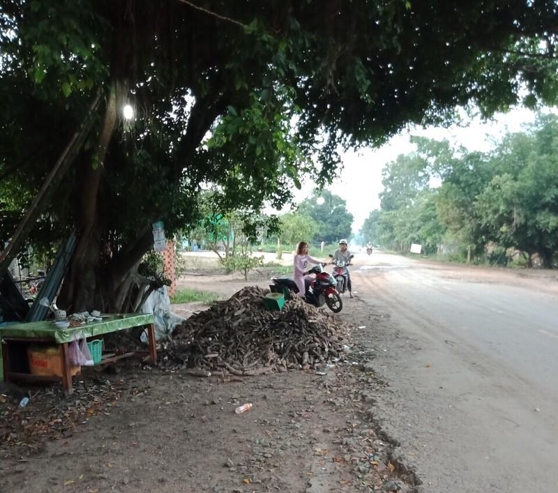 Vụ người thu gom mì mót chết: VKS tỉnh Tây Ninh nói gì? - ảnh 1