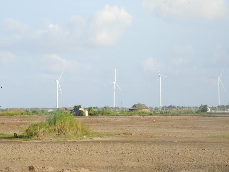 Dừng phiên xử 2 công ty làm dự án điện gió Bạc Liêu  - ảnh 1