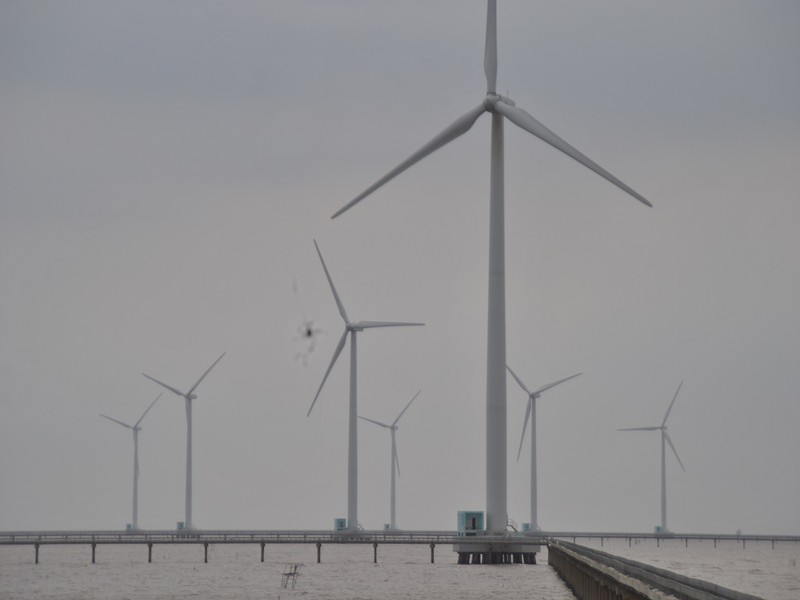 Ông chủ điện gió Bạc Liêu thắng kiện 5 tỉ đồng - ảnh 1
