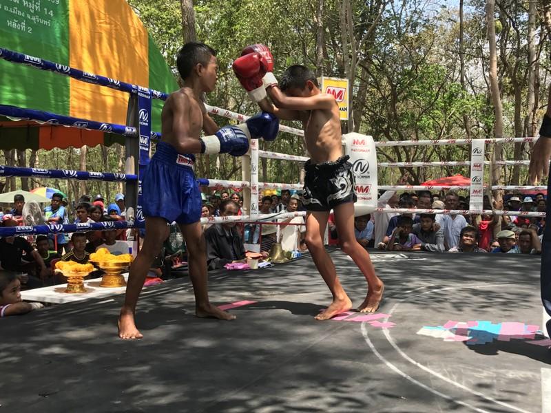 Cần cấm ngay trẻ em thi đấu Kickboxing - ảnh 2