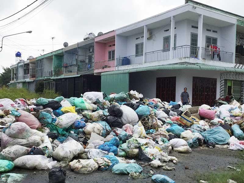 Đóng tiền đủ, rác vẫn dồn ứ quanh nhà - ảnh 1