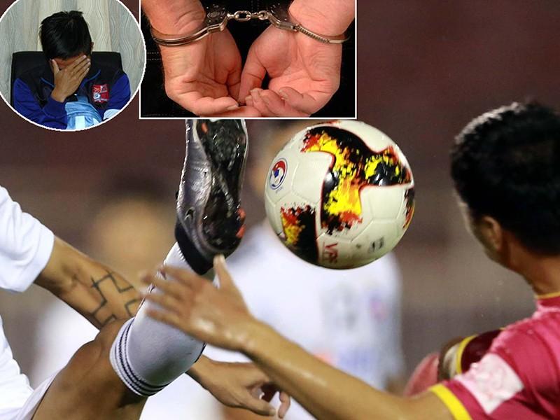 Bóng V-League lăn mùa cá cược World Cup! - ảnh 1
