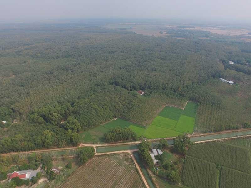 Sagri có vi phạm gì đối với 1.900 ha đất? - ảnh 1