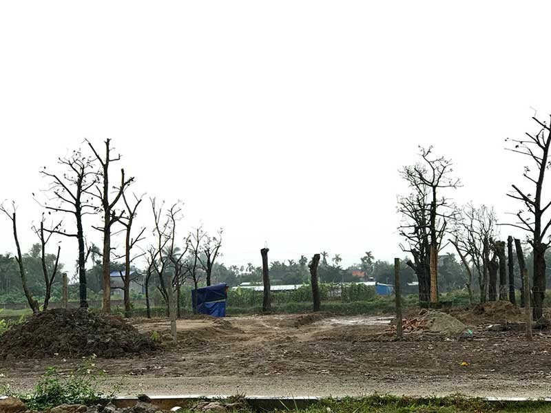 Hải Phòng: Đua nhau san lấp đất nông nghiệp ven đường - ảnh 1