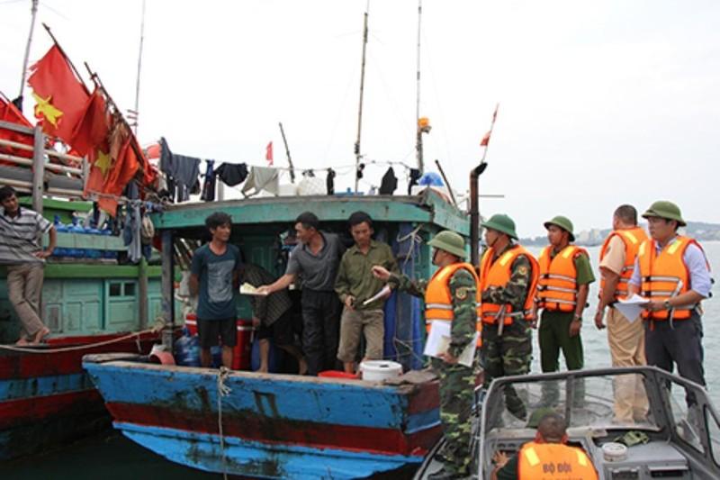 Quảng Ninh dự kiến tiếp tục cấm tàu từ ngày 16-9 - ảnh 1