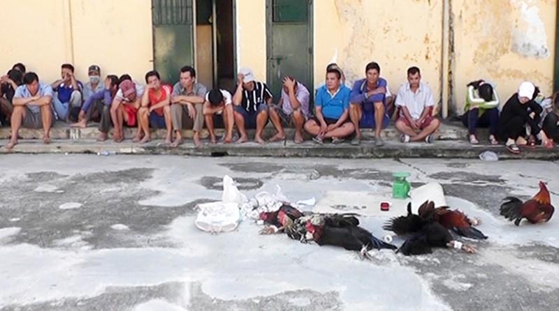 Phó Bí thư An Giang nói về con trai đá gà, nghiện ma túy  - ảnh 1