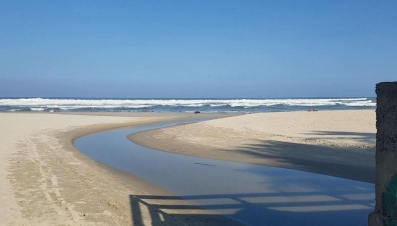 Bí thư Đà Nẵng chỉ đạo 'nóng' khi thị sát bãi biển - ảnh 1
