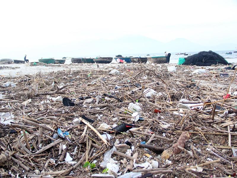 100 tấn rác 'đổ bộ' bờ biển Đà Nẵng - ảnh 2