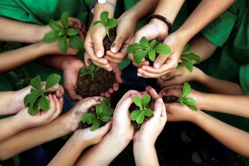 Giải báo chí tài nguyên và môi trường lần thứ 4 - ảnh 1