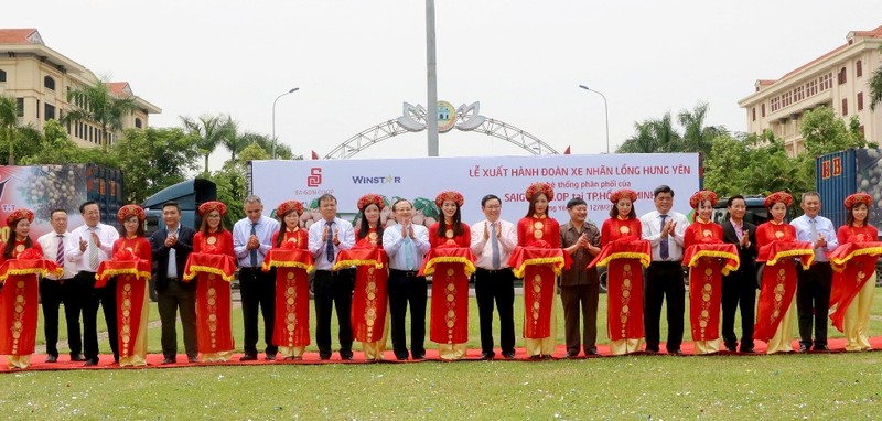 SaigonCo.op bao tiêu tối thiểu 100 tấn nhãn lồng Hưng Yên - ảnh 1