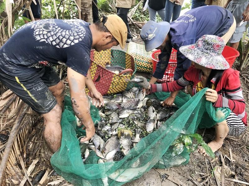 Người dân xã Đa Phước thu hoạch gần 2 tấn cá - ảnh 4