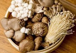 Làm gì để nấm bổ dưỡng hơn? - ảnh 1