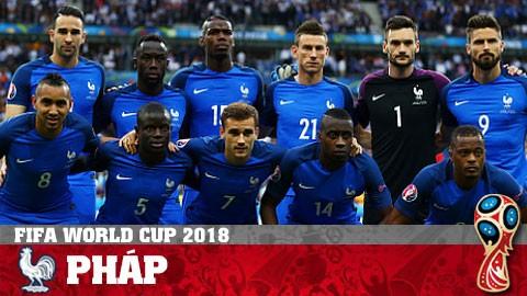 Giấc mơ của người Pháp ở World Cup 2018 - ảnh 1