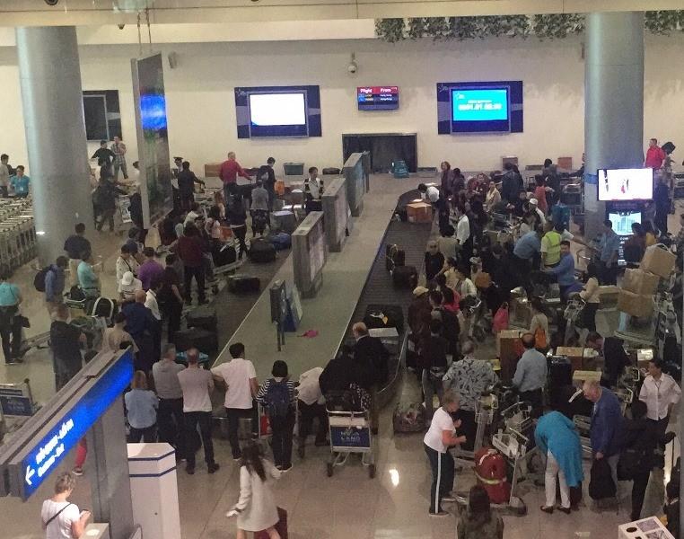 Sân bay Tân Sơn Nhất nhộn nhịp đón Việt kiều về quê ăn Tết - ảnh 5