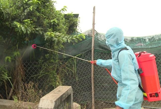 Xuất hiện ổ dịch cúm A/H5N6 độc lực cực mạnh - ảnh 2