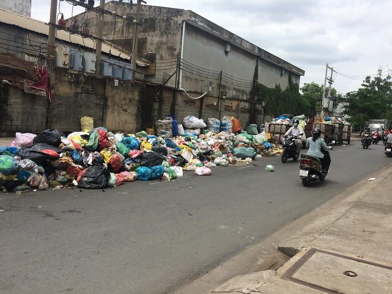 Dân kêu trời vì bãi rác nằm ngay giữa đường - ảnh 1