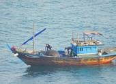 Dùng thuốc nổ đánh cá ngay trong vịnh Đà Nẵng?