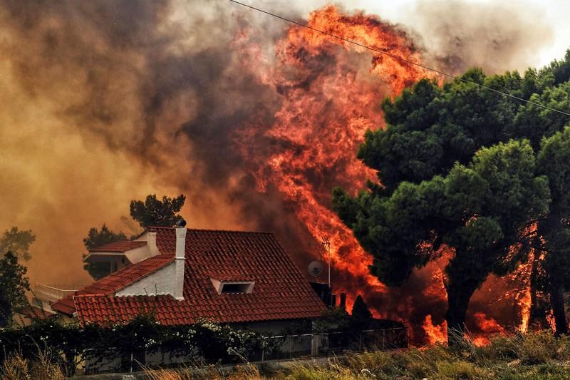 87 người chết trong vụ cháy rừng kinh hoàng đầu tuần này ở Hy Lạp. Ảnh: GETTY IMAGES