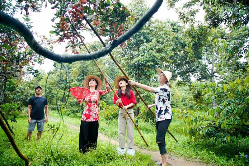 Hậu ra mắt MV mới Gin dắt tay Han Sara về Bến Tre ăn trái cây - ảnh 7