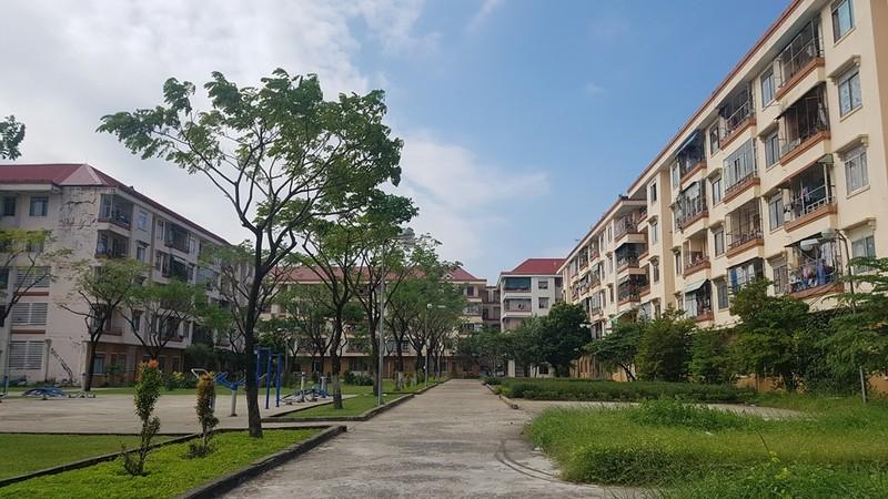 Đà Nẵng 'tuýt còi' việc chuyển nhượng tại 42 chung cư nhà nước - ảnh 1
