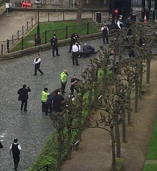 Tông xe, nổ súng trước cửa tòa nhà Quốc hội Anh - ảnh 1