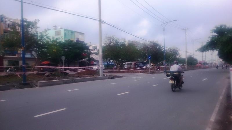 Bất động sản phía Tây Sài Gòn hút khách, giá tăng - ảnh 2