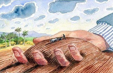 Chuyển đổi mục đích sử dụng đất cần làm những thủ tục gì? - ảnh 1