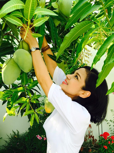 Biệt thự nhà vườn ngập hoa quả của diễn viên Việt Trinh - ảnh 6