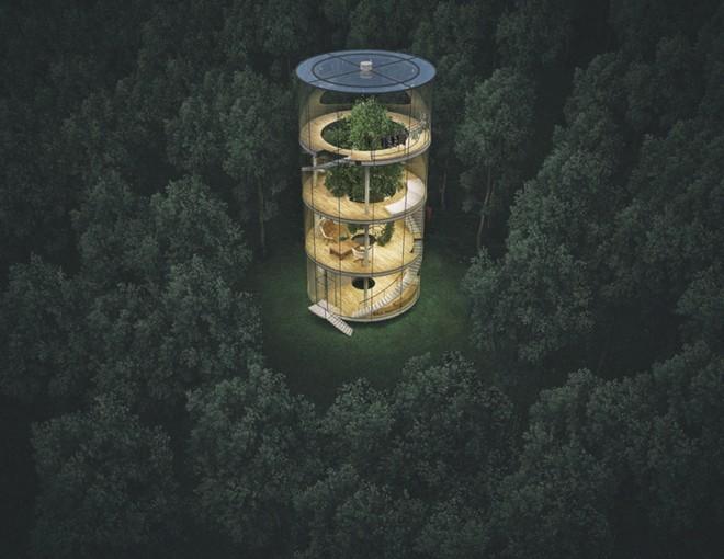 Nhà 4 tầng trong suốt nằm giữa rừng - ảnh 1