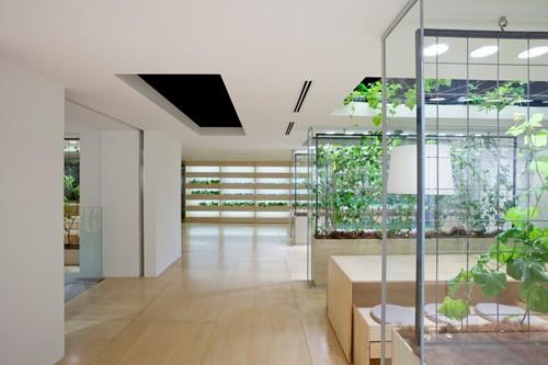 Nhật Bản thiết kế ruộng lúa ngay trong tòa nhà 9 tầng - ảnh 18