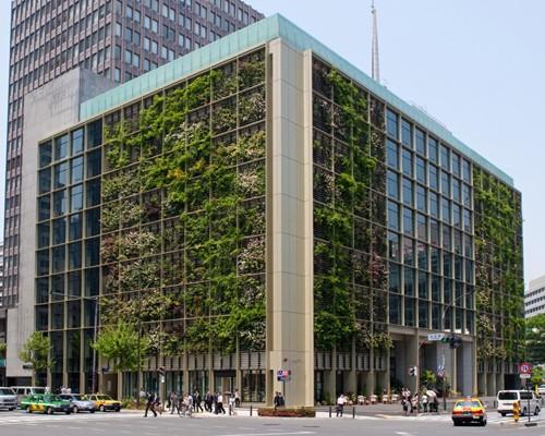 Nhật Bản thiết kế ruộng lúa ngay trong tòa nhà 9 tầng - ảnh 1