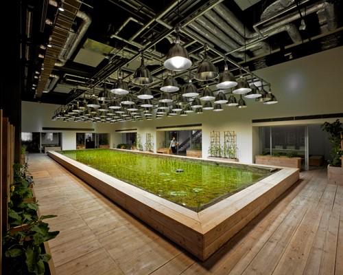 Nhật Bản thiết kế ruộng lúa ngay trong tòa nhà 9 tầng - ảnh 21