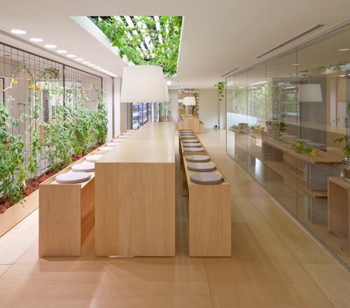 Nhật Bản thiết kế ruộng lúa ngay trong tòa nhà 9 tầng - ảnh 22