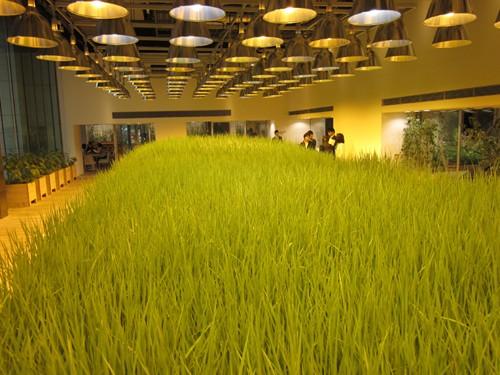 Nhật Bản thiết kế ruộng lúa ngay trong tòa nhà 9 tầng - ảnh 3