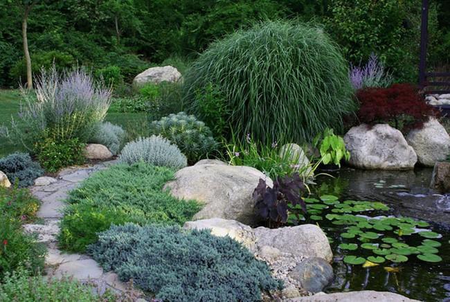 Biến sân vườn thành ốc đảo xanh mát nhờ vài mẹo nhỏ - ảnh 15