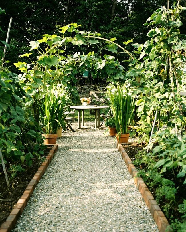 Biến sân vườn thành ốc đảo xanh mát nhờ vài mẹo nhỏ - ảnh 19