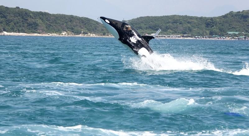 'Cưỡi' cá mập, cá heo tuyệt đẹp trên biển Nha Trang     - ảnh 9