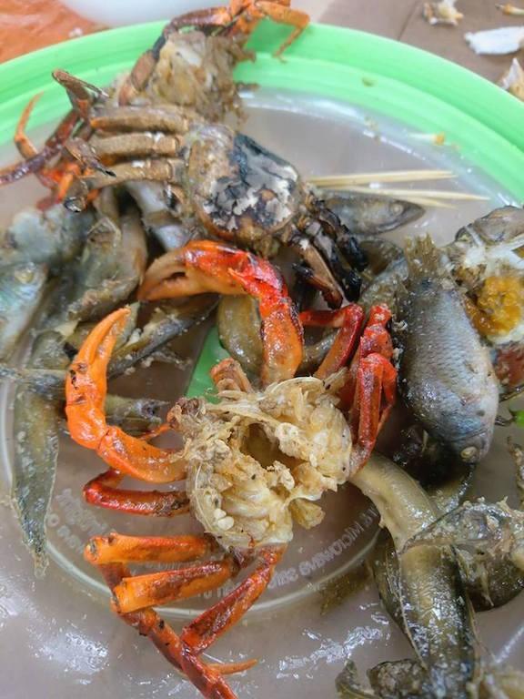 Về An Giang ăn cá linh trên đồng nước nổi - ảnh 12