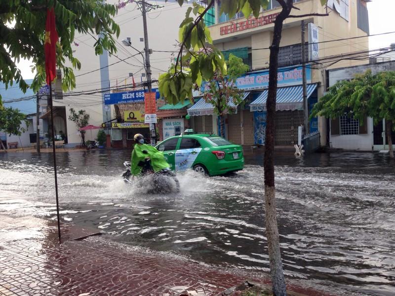 Xuất hiện 'cơn mưa vàng' ở Cần Thơ - ảnh 1