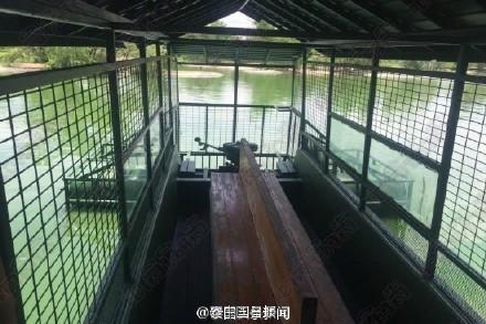 Du khách Trung Quốc điên đảo với dịch vụ câu cá giữa 4.000 con cá sấu - ảnh 5
