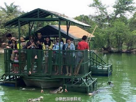Du khách Trung Quốc điên đảo với dịch vụ câu cá giữa 4.000 con cá sấu - ảnh 7
